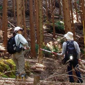 森林の環境認証制度  滋賀県で唯一のCO2吸収認証制度(2010.3.15)